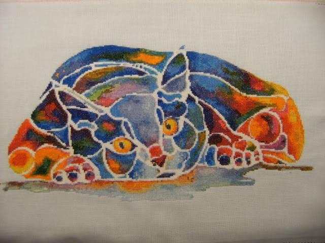 Le chat Calypso de HAED HAEDCalypso01112010003