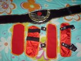 WTS: [Ragnarok Online] Female Champion Costume Th_DSC00976