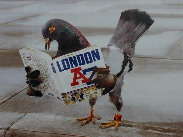 Londoninfo