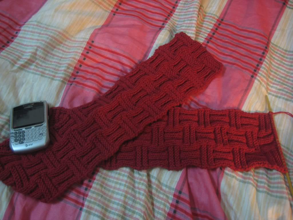Mẫu đan của thành viên - Page 6 IMG_1439-Copy