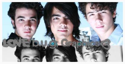 L O V E b.u.g;Graphics<3 LOVEbug