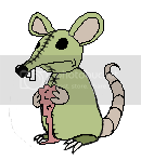 This is a Cry for Help!!! Rat0