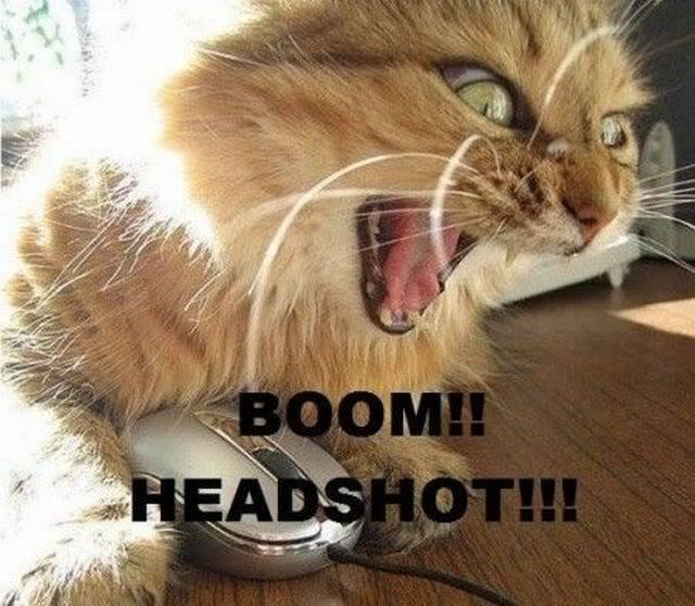 (Contest) Post Whore Da' Game - Page 4 CATheadshotcat