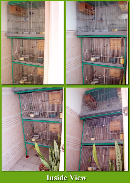 AVIARY Pictures Plus Concerns Avairyinsideview