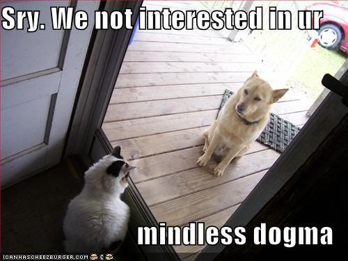 Your first subject Funny-pictures-cat-greets-dog-at-do