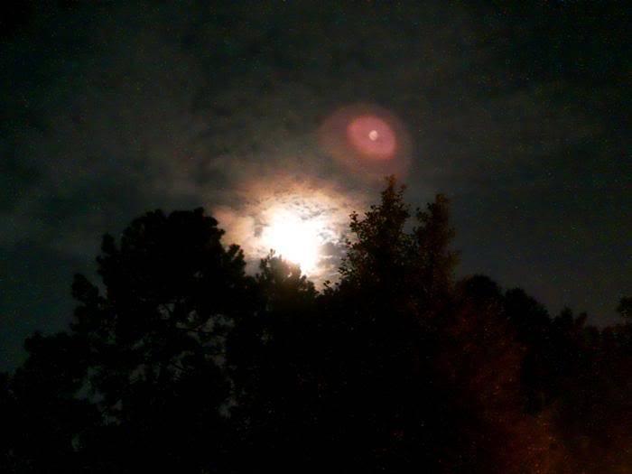 UFO at my house!  011e