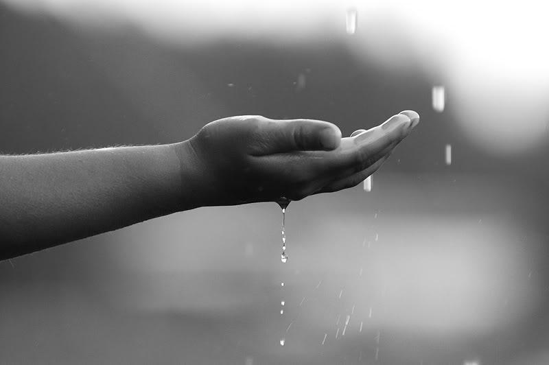 mưa và nắng Rain_theme_by_SielojRamu