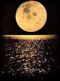 Bosansko vještičarstvo Full_moon