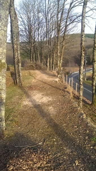 piste TT sous les bois MAJ 04/2016 - Page 2 IMAG6410%20800x600_zpsmmmyugwe