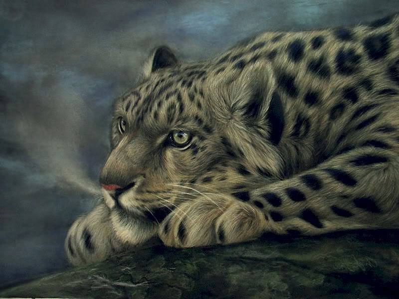 Mufasa Leopard