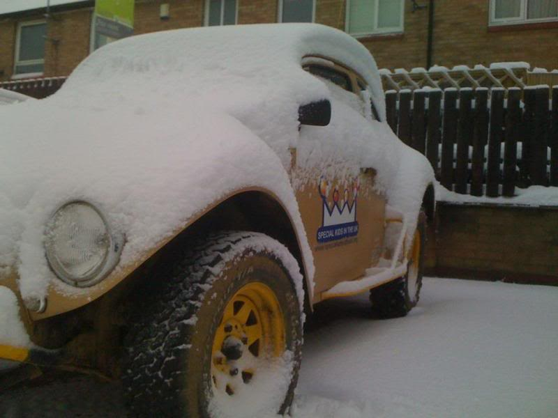 dubs in the snow 429826_185880521511923_138388406261135_249365_817035509_n