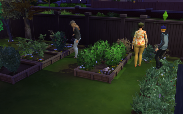 Playing  Sims 4 by Gramcrackers SandyB19gardening_zps647bf3d8
