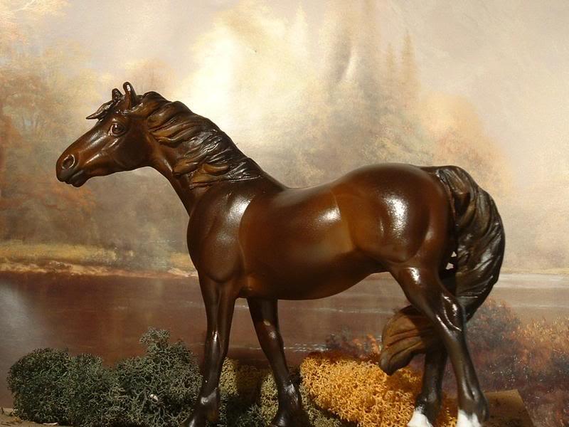 Model horse photo show Bilde1676