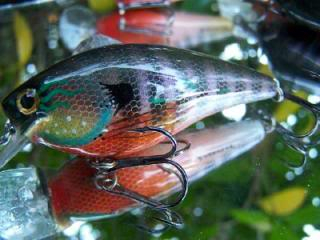 The nice lure thread - Page 3 Med_1_bluegill_small_pic
