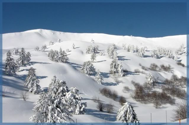 xnow Photo Album [all mountains] 07