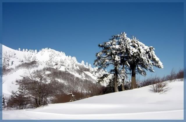 xnow Photo Album [all mountains] 08