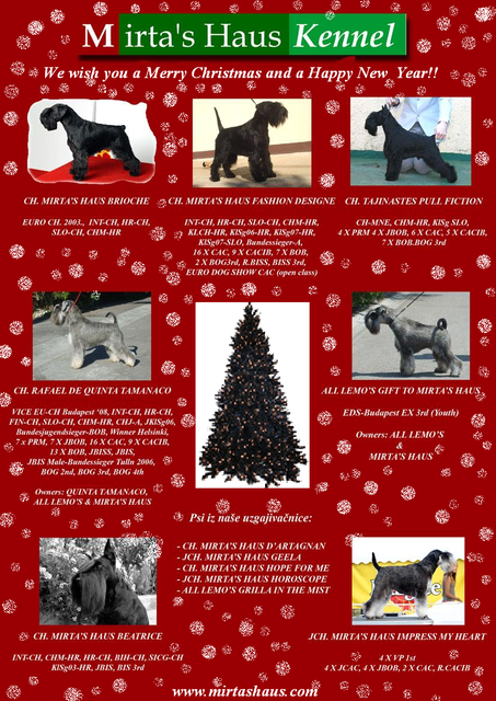 Holiday greetings from Mirta's Haus Kennel CopyofCopyofmirtas-house-nova-mail