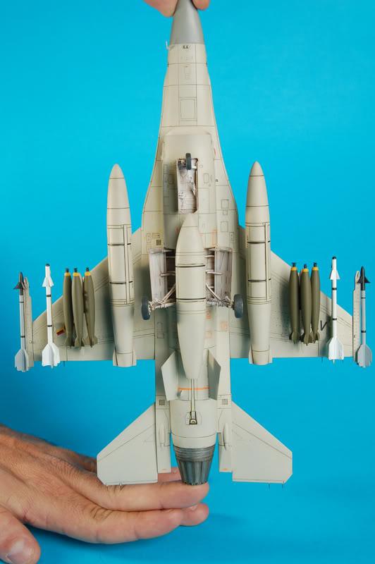 F-16B Viper Aniversario Venezolano DSC_7441