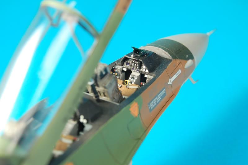 F-16B Viper Aniversario Venezolano DSC_7463