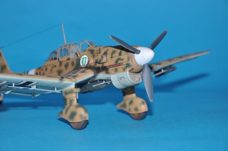 Junker Ju-87 B-2 Trop, africa. DSC_8977