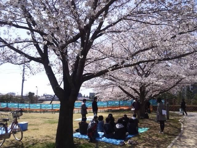 BLOG: Miwa Sato 2-165