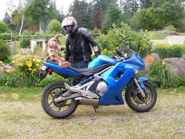 Riding buddy mascots! 2013-07-1719_zps47212903