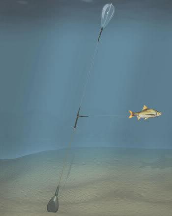 live baiting help Sunk_float