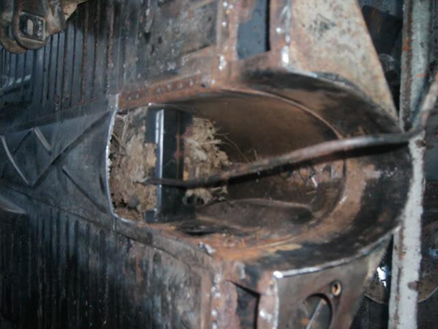 Ressurreição do TEXAS BUG um OLD RACE IMAG0179