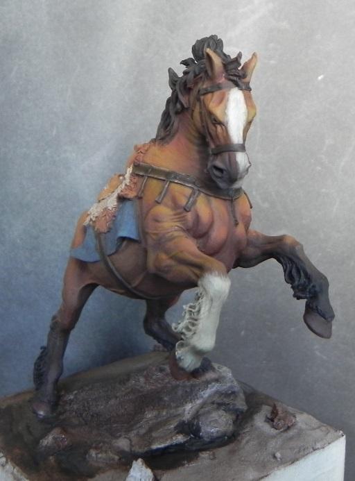 Viking on horseback - 54mm Andrea Miniatures DSCN7085_zps5abbbcbf