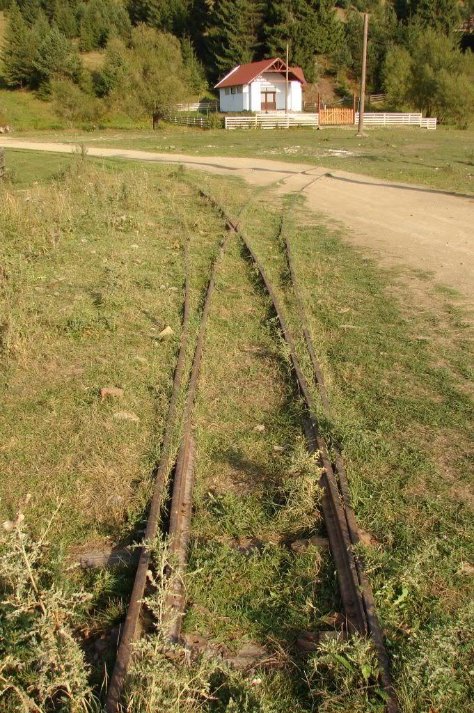Caile ferate forestiere - Pagina 4 DSC07704