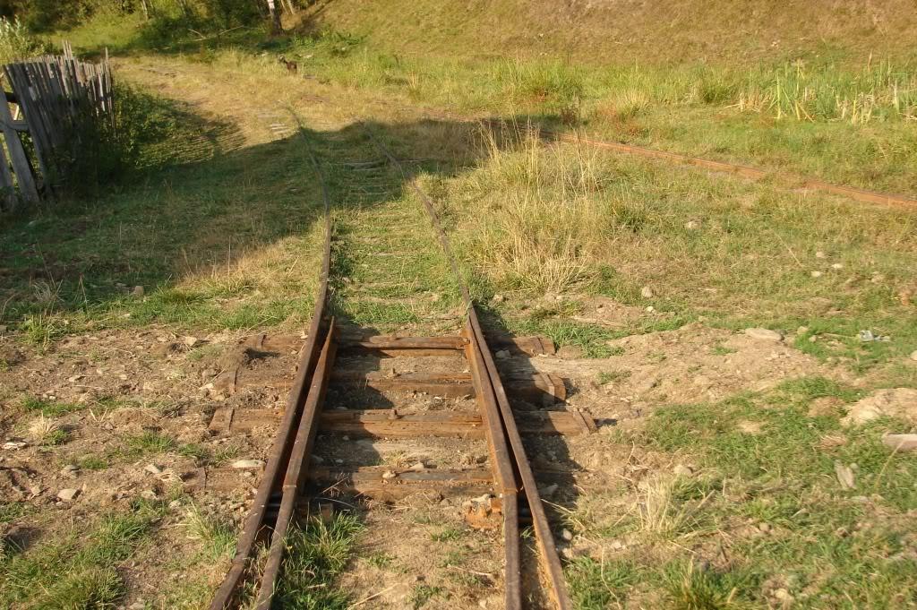 Caile ferate forestiere - Pagina 4 DSC07709