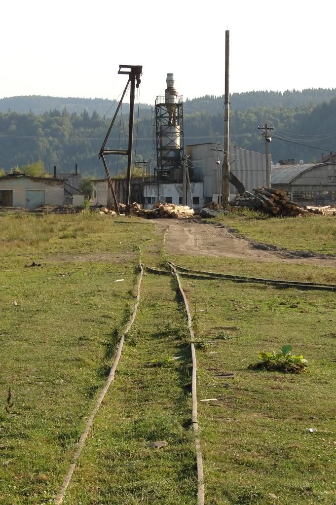 Caile ferate forestiere - Pagina 4 DSC07713
