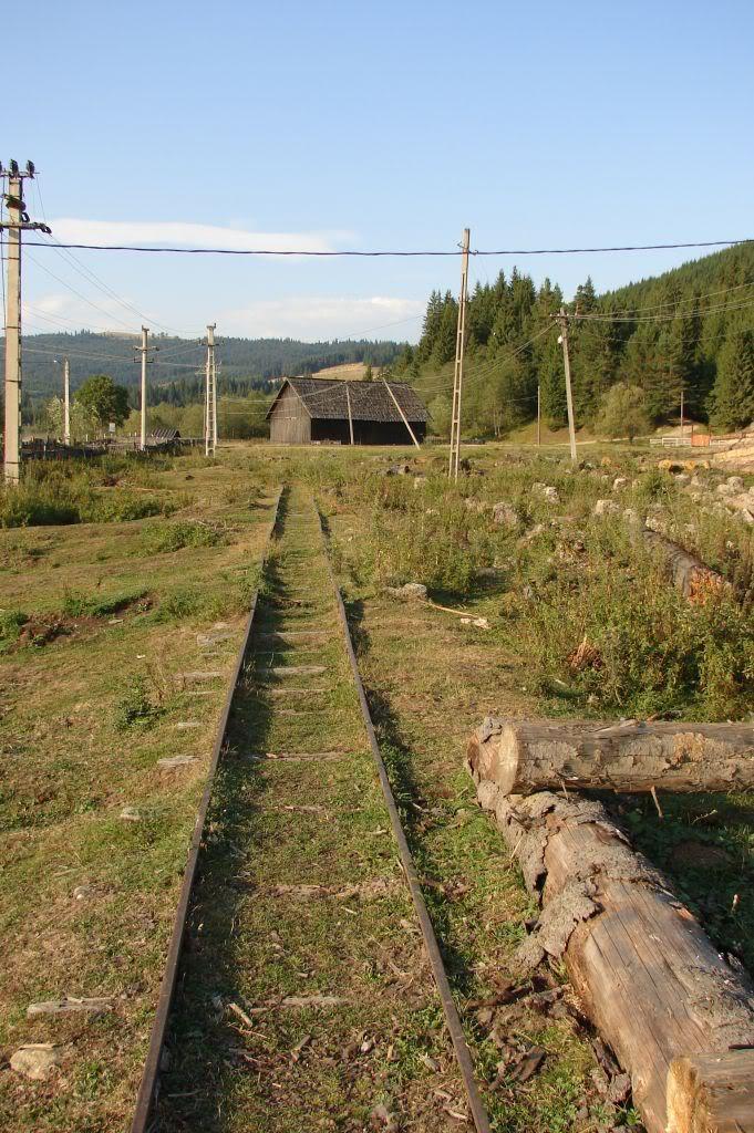 Caile ferate forestiere - Pagina 4 DSC07722