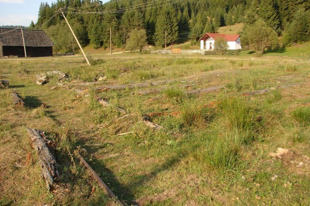 Caile ferate forestiere - Pagina 4 DSC07725