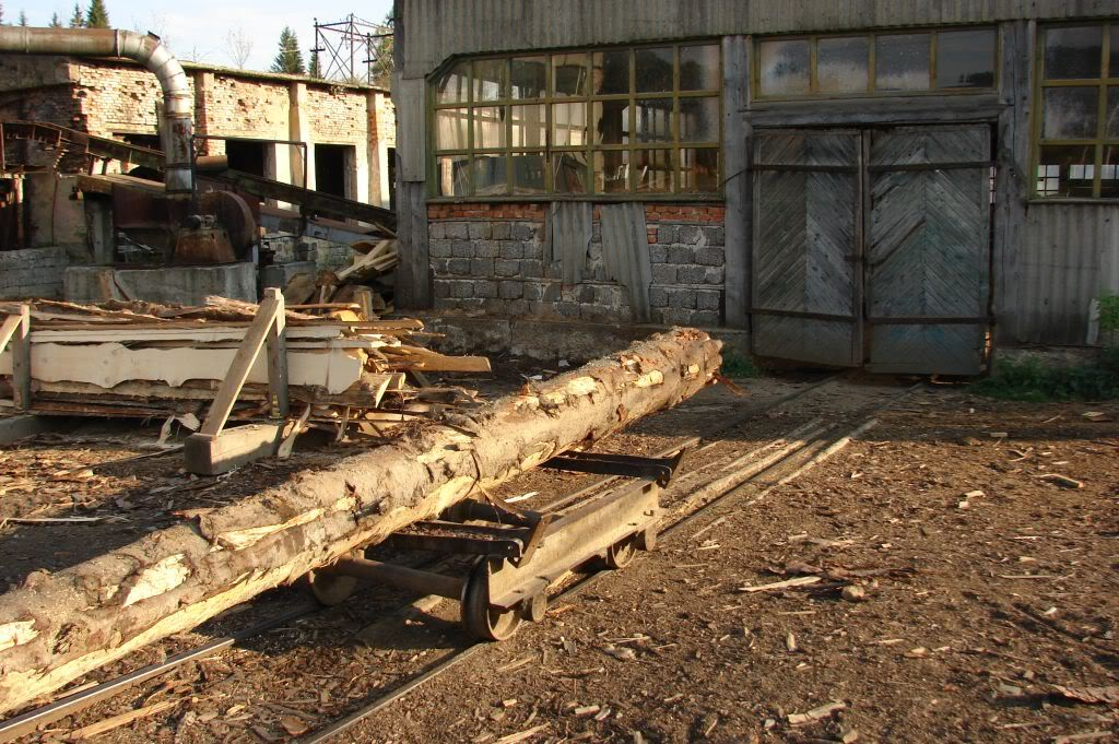 Caile ferate forestiere - Pagina 4 DSC07730