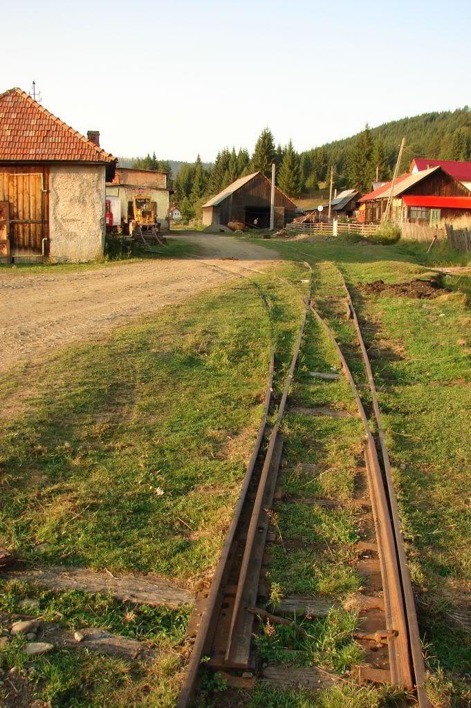 Caile ferate forestiere - Pagina 4 DSC07773