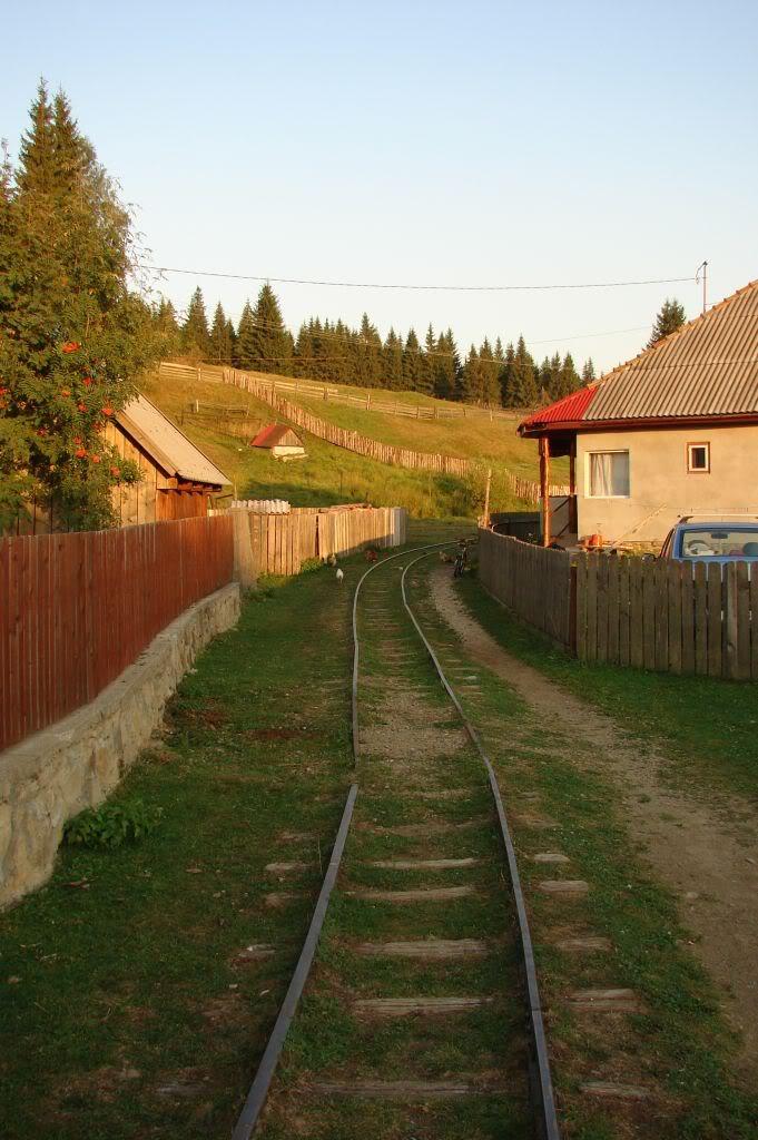 Caile ferate forestiere - Pagina 4 DSC07784