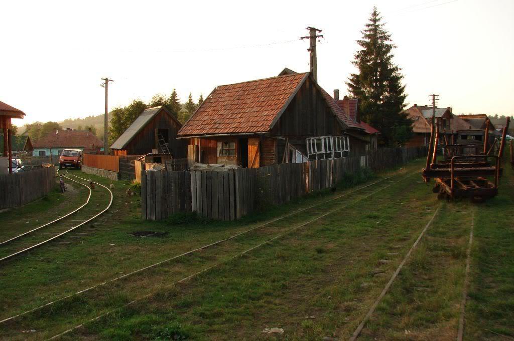 Caile ferate forestiere - Pagina 4 DSC07786