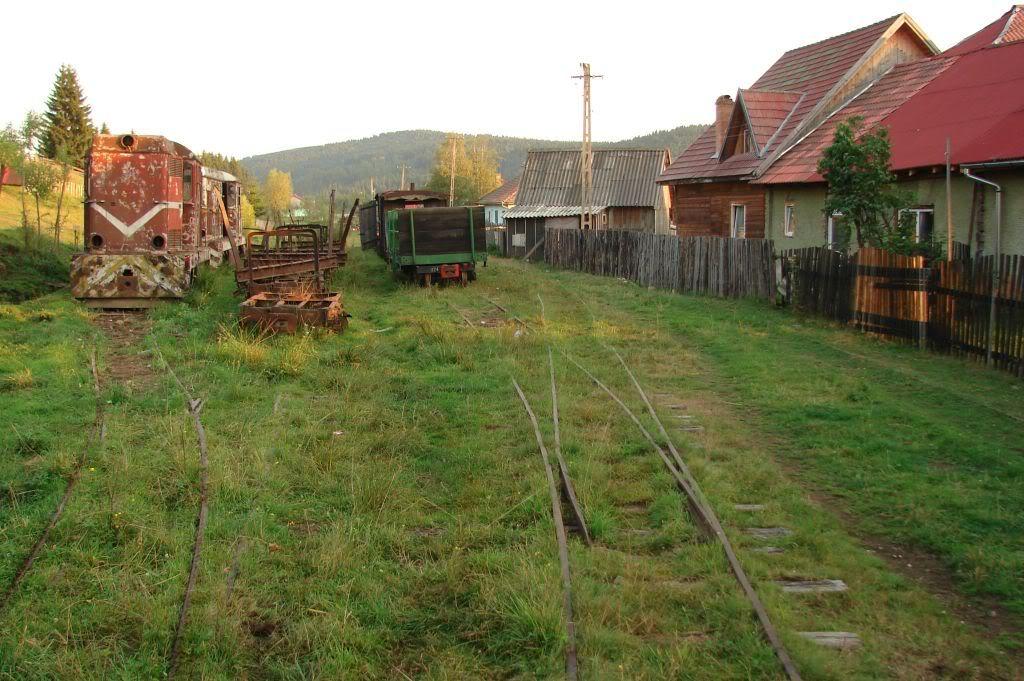 Caile ferate forestiere - Pagina 4 DSC07790