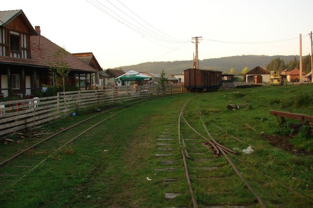 Caile ferate forestiere - Pagina 4 DSC07791