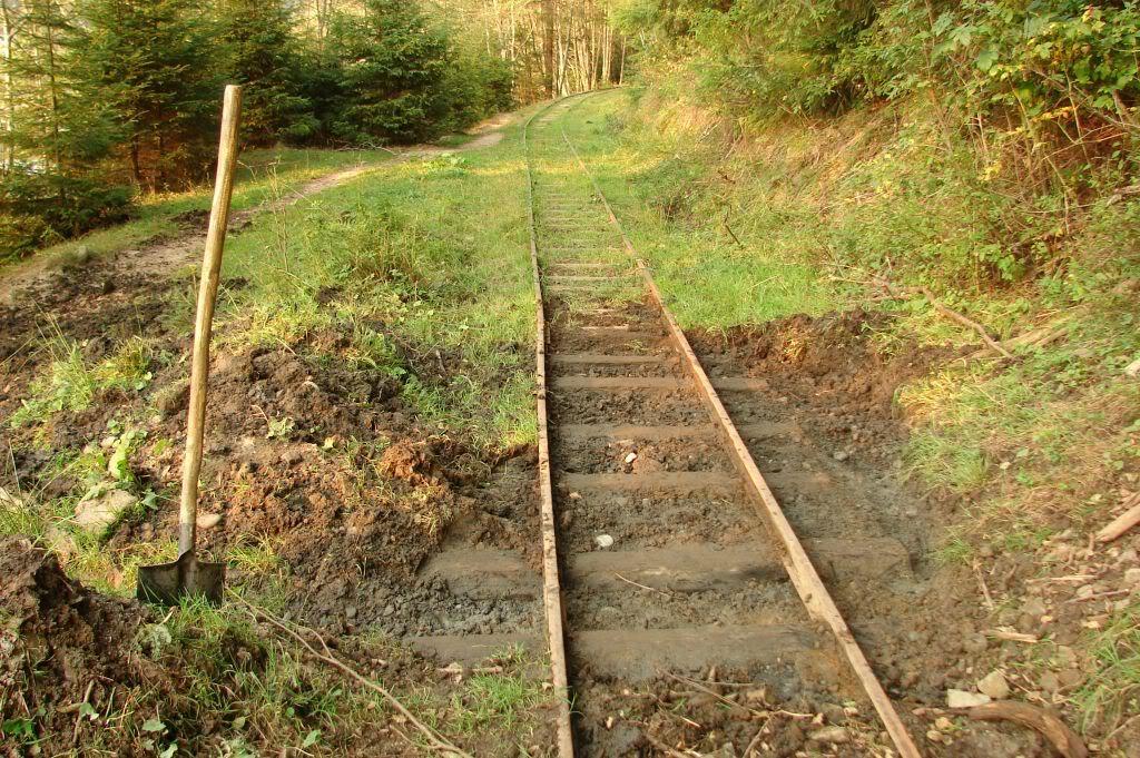 Caile ferate forestiere - Pagina 4 DSC08068