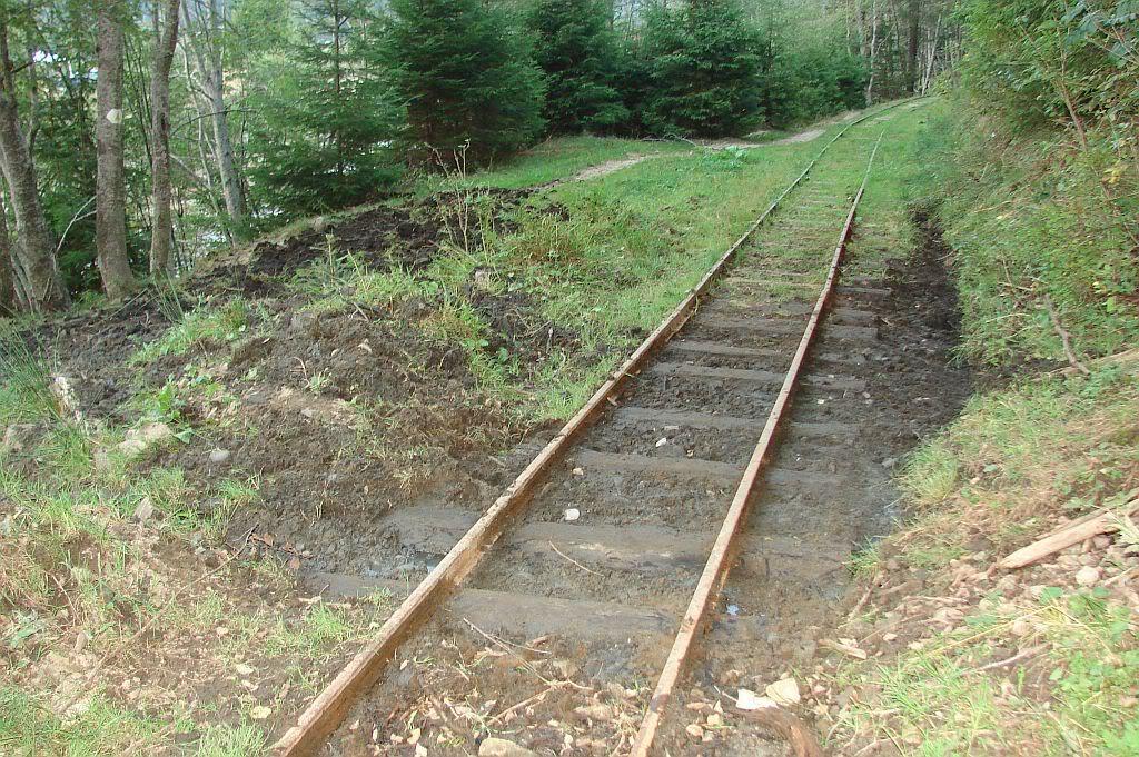 Caile ferate forestiere - Pagina 4 DSC08091