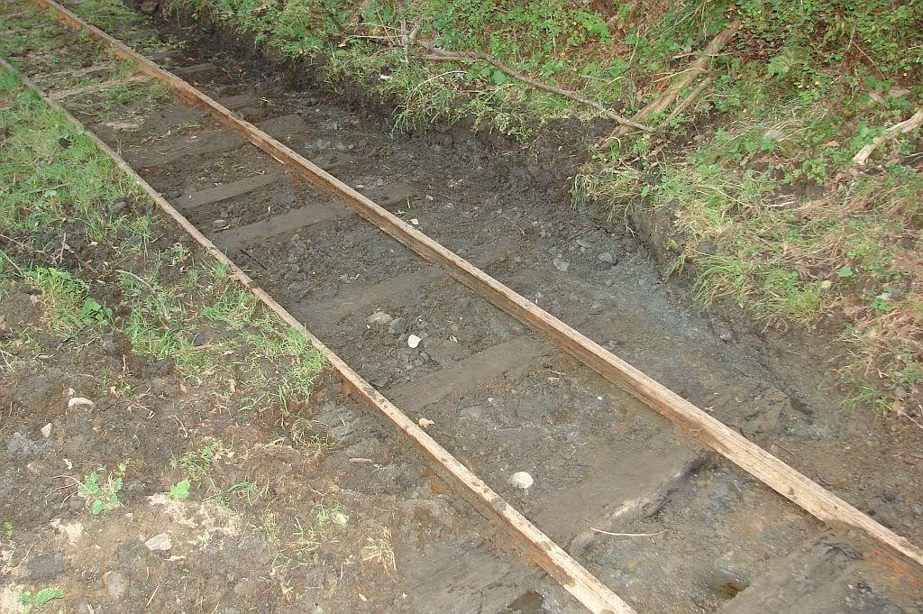 Caile ferate forestiere - Pagina 4 DSC08092