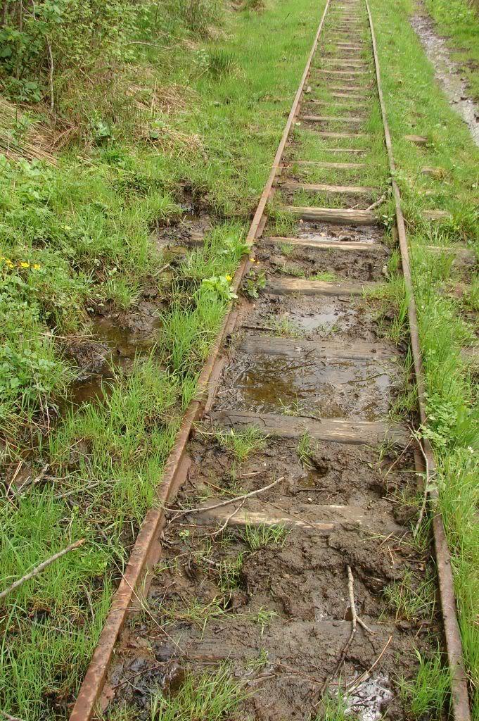 Caile ferate forestiere - Pagina 3 DSC04734