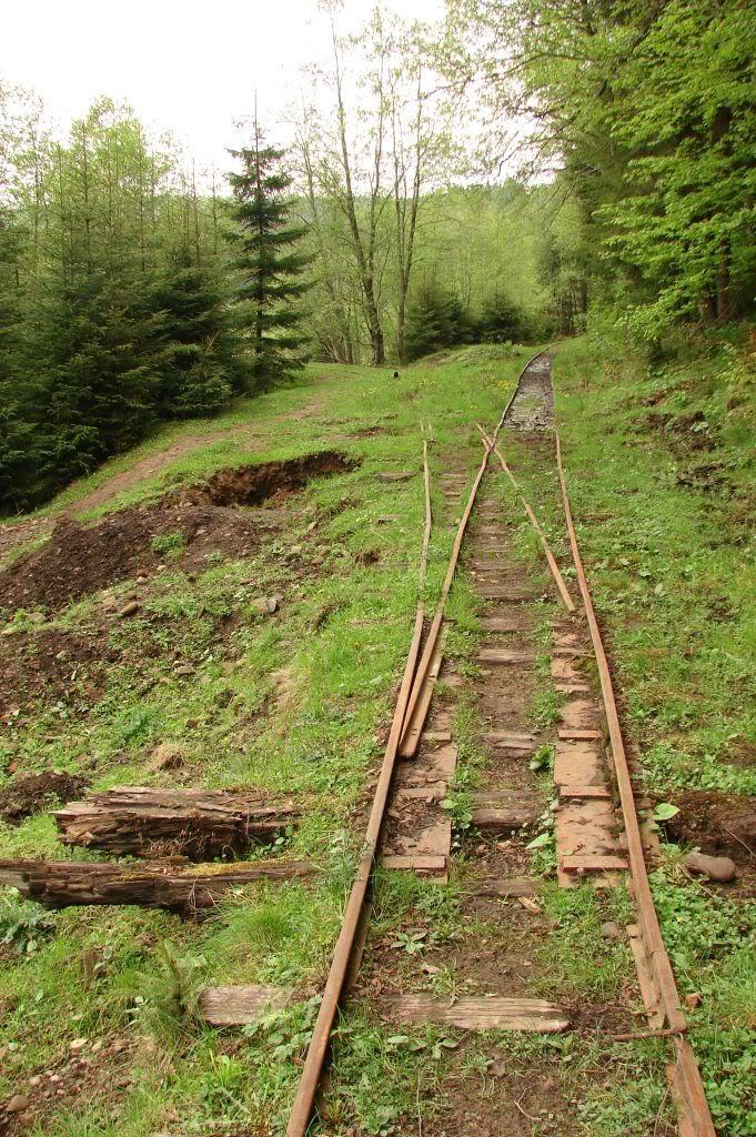 Caile ferate forestiere - Pagina 3 DSC04747
