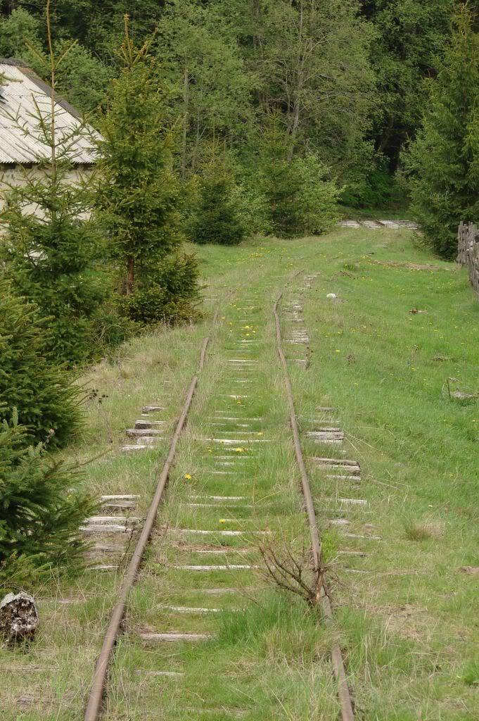 Caile ferate forestiere - Pagina 3 DSC04752