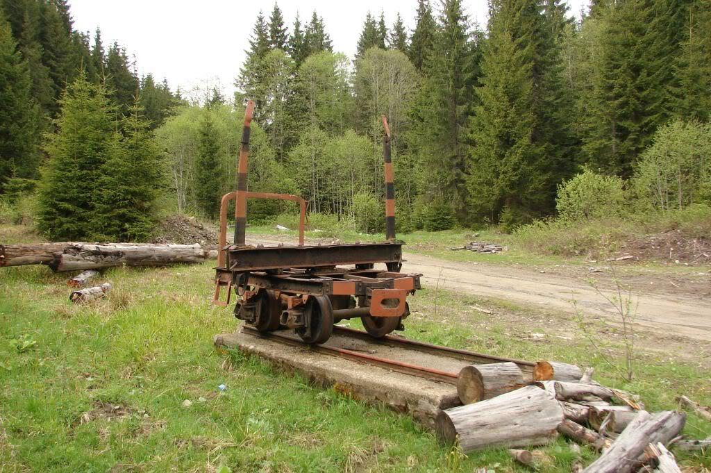 Caile ferate forestiere - Pagina 3 DSC04763