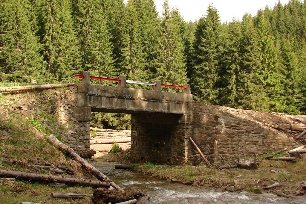 Caile ferate forestiere - Pagina 3 DSC04776