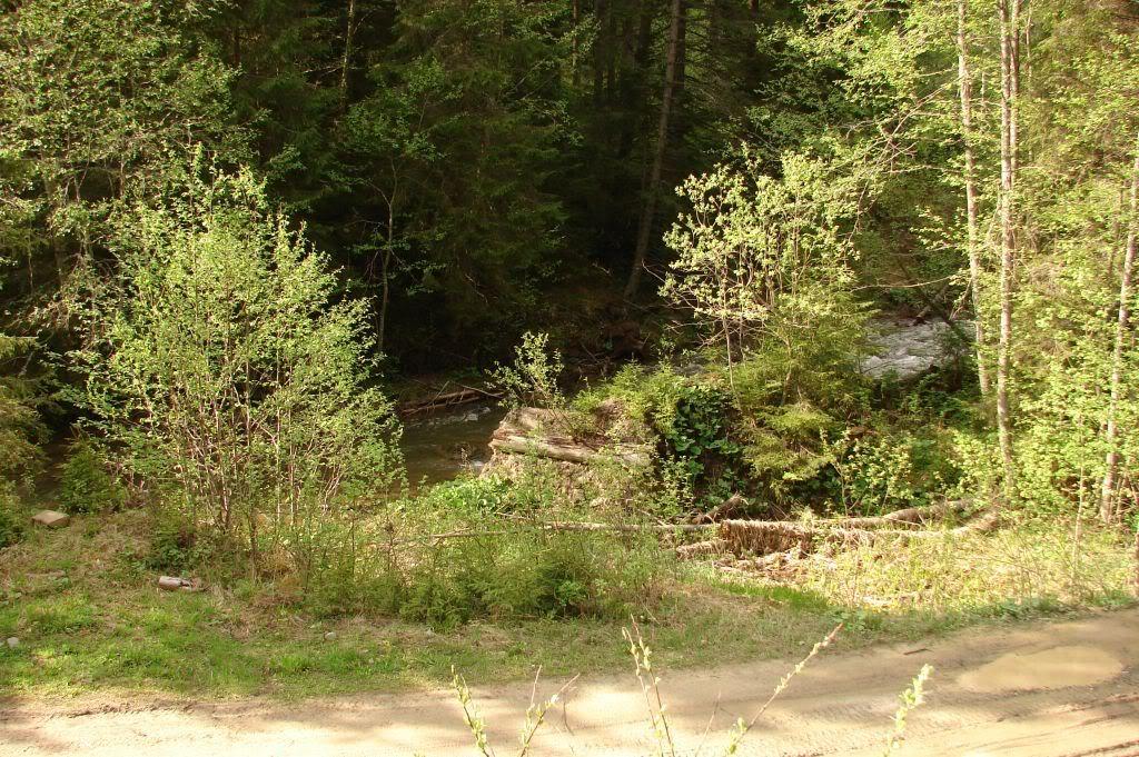 Caile ferate forestiere - Pagina 3 DSC04777
