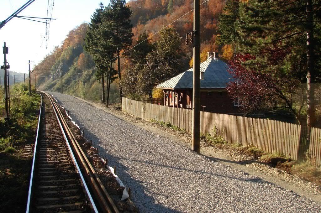 907 : Rosiori Nord - Costesti - Pagina 6 DSC07401